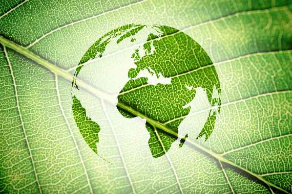 Silhouette of Earth on green leaf texture background